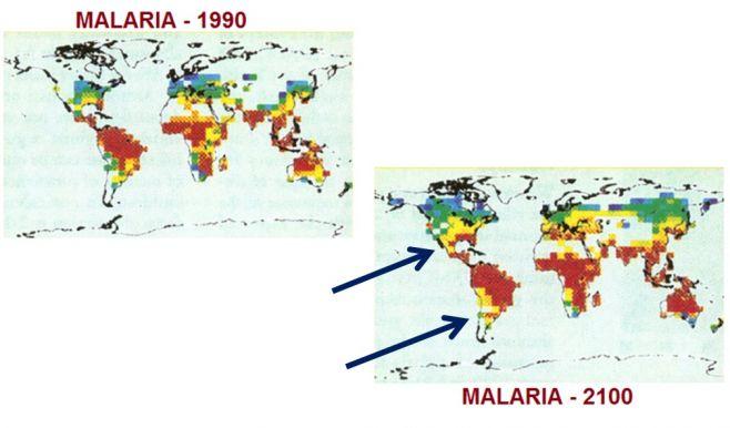 Avance de la Malaria