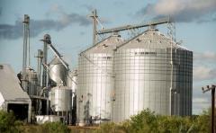 Manini Ríos: Uruguay atraviesa situación crítica del sector productivo
