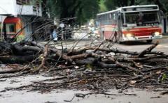 BSE: 438 denuncias por daños tras el temporal del pasado domingo