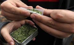 Amarilla promoverá derogación de artículos de la ley de marihuana