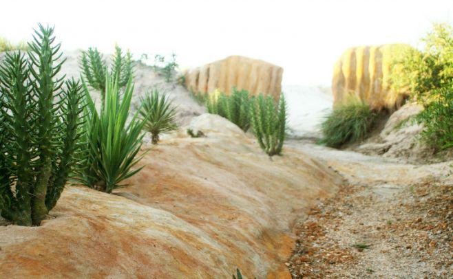 Desierto. Parque Biomas