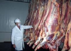 """""""Carne débil"""": Brasil desbarata red de sobornos a inspectores frigoríficos"""