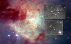 """NASA halla una estrella """"fugitiva"""" en nebulosa de Orión"""