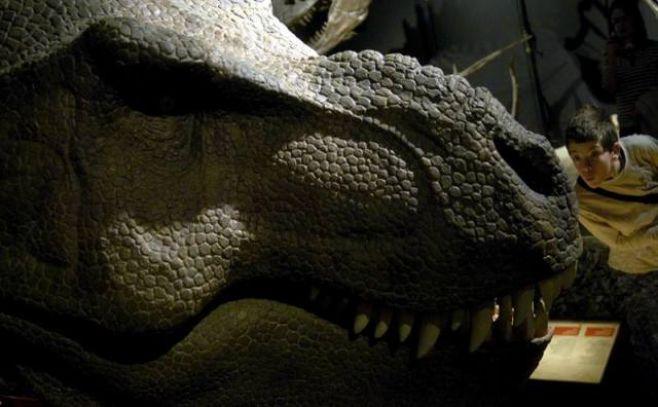 El tiranosaurio tenía una cara sin labios y con escamas