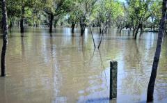 Travesía en el Río Cuareim casi termina en tragedia