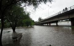 906 personas permanecen desplazadas en Artigas