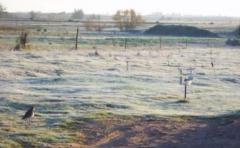Llegaron las primeras heladas al centro del país