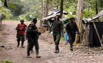 FARC manifiesta su apoyo a la revolución bolivariana y a Maduro