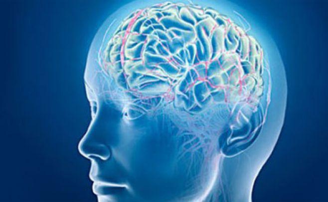 Estudio revela que personas bipolares tienen menos materia gris