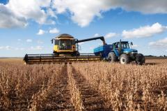Soja: ADP trilló el 80% del de las 24 mil hás sembradas
