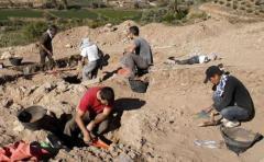 Hallan restos de los primeros humanos del Neolítico