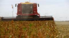 """Soja: con números ajustados, la productividad """"alivia al agricultor"""""""