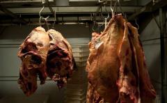 Exportaciones de carne aumentaron 15% en lo que va del año