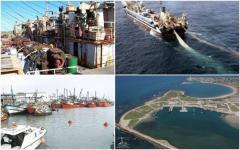 Barcos chinos en La Paloma: entre el trabajo y la destrucción