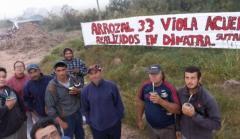 Arroceros buscan formar sindicato único para reclamar por represión sindical