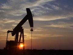 """Viñas: """"Hay intención de usar"""" el fracking"""