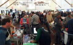 7ma Feria de Prolesa, con mayor concurrencia
