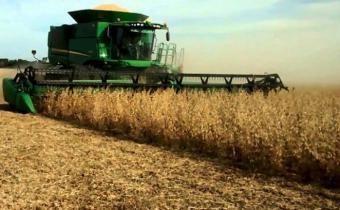 PIB agropecuario creció 5.4% en primer trimestre