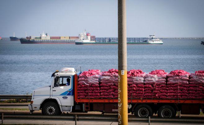 Exportaciones aumentaron 8% en el primer semestre del 2017