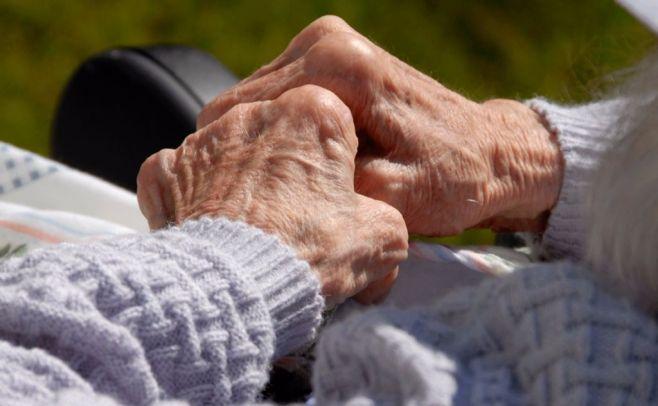 Científicos brasileños consiguen interrumpir avance del alzheimer en animales