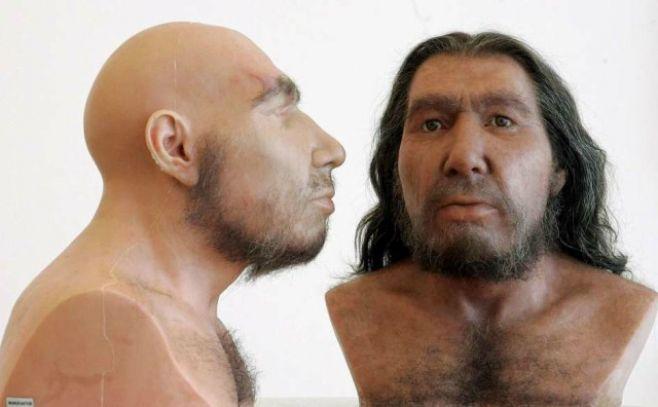 El ADN aclara la relación de Neandertales y humanos modernos