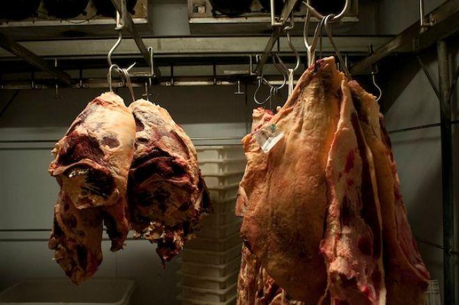 "Cambio de firma de frigoríficos ""no afectará"" el mercado, según Zambrano"