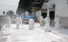 Más de 29.000 afectados por brote de fiebre aftosa humana en Japón