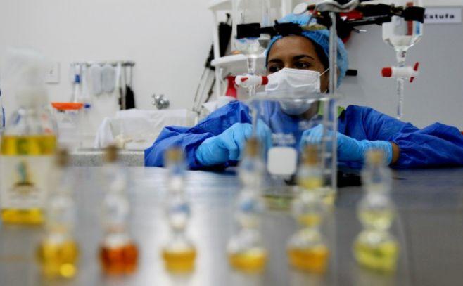 Científicos logran producir anticuerpos humanos en laboratorio