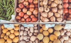 Comer y adelgazar: 8 alimentos que sirven para quemar grasas