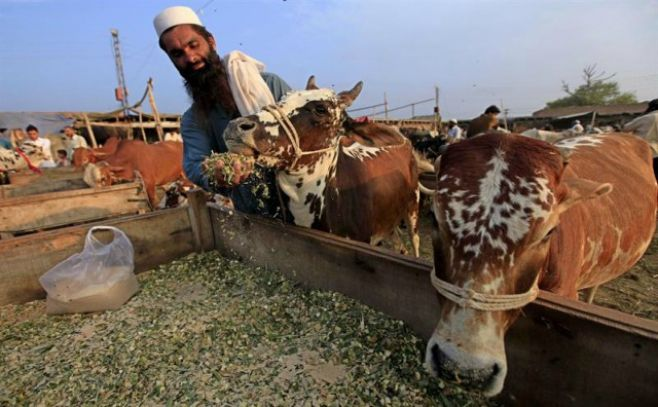 Presencia de arsénico en agua amenaza a 60 millones de paquistaníes