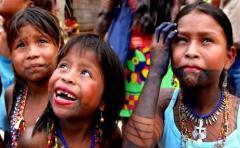 Afirman que los indígenas son las primeras víctimas del cambio climático
