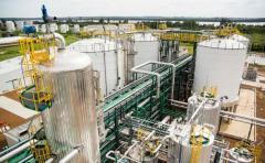 Alur impulsa el Plan Comercial Sorgo, que ofrece garantías comerciales al productor