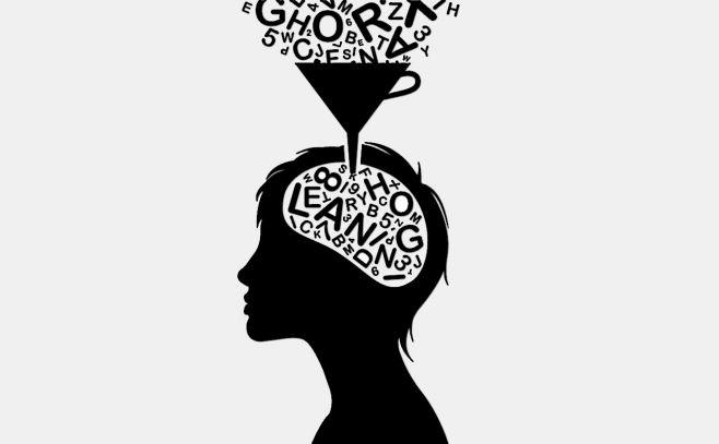 Neurociencia, educación y desigualdad
