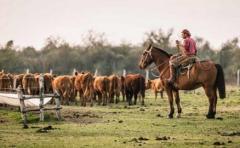 Empleo rural: Carta abierta, pero con destinatario
