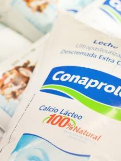 """Wilson Cabrera: """"Brasil buscó una excusa para no permitir ingreso de leche uruguaya"""""""
