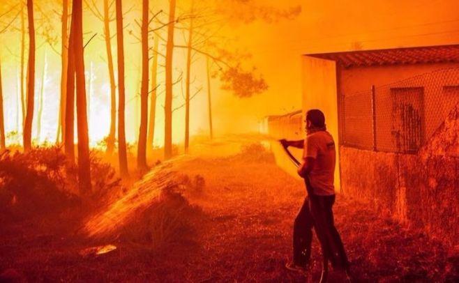 Suben a 31 los muertos en los incendios de Portugal. EFE