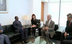 """Gobierno de Zimbabue dice que """"nunca"""" se pidió a Mugabe ser embajador de OMS"""