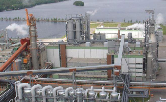 UPM dice que aún restan dos etapas para evaluar instalación de otra planta