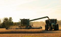 USDA: Nuevo informe no reflejó las expectativas del mercado de granos