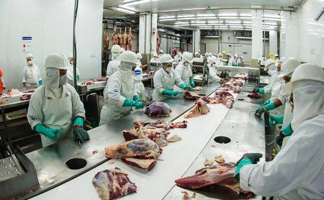 FOICA analiza medidas, tras anuncio de despido de 78 trabajadores de la industria