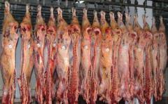 Agricultores europeos preocupados por que UE aumente compra de carne al Mercosur