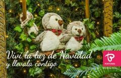 Vení a vivir la Luz de la Navidad a Portones y llevala contigo