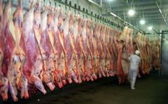 Foica rechaza propuesta del frigorífico Solís y evalúa nuevas medidas