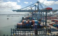 Exportaciones uruguayas aumentaron 9,2 % en 2017