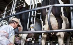 La ANPL se reúne con productores lecheros remitentes a PILI