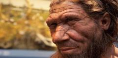 Los neandertales, mucho menos neandertales