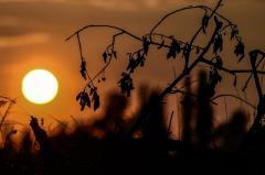 """De León: """"La región es particularmente vulnerable a los efectos adversos del cambio climático"""""""