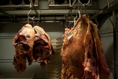 Exportaciones de carne sube 9 % en primeros ocho meses de 2018