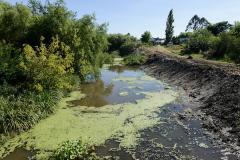 BM destaca políticas ambientales de Uruguay pero mira con preocupación la contaminación del agua