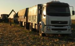 Gremiales agropecuarias y transportistas acordaron tarifas para transporte de granos